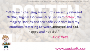 Netflix Rotten Review The Peanut Problem by SosiSafe