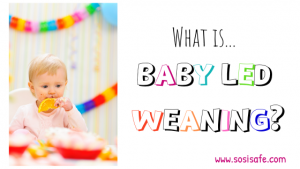 What is Baby Led Weaning?