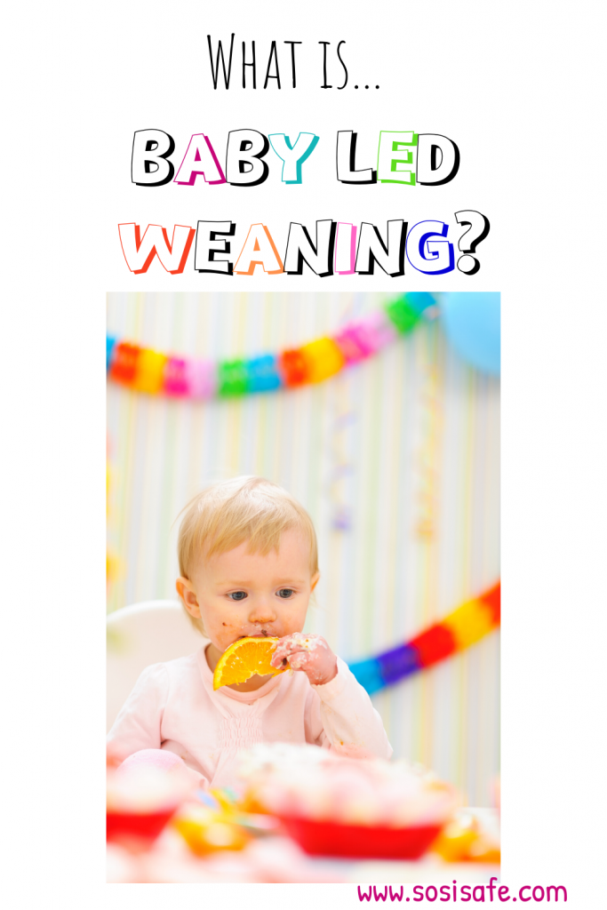 What is Baby Led Weaning? Is it right for your family?